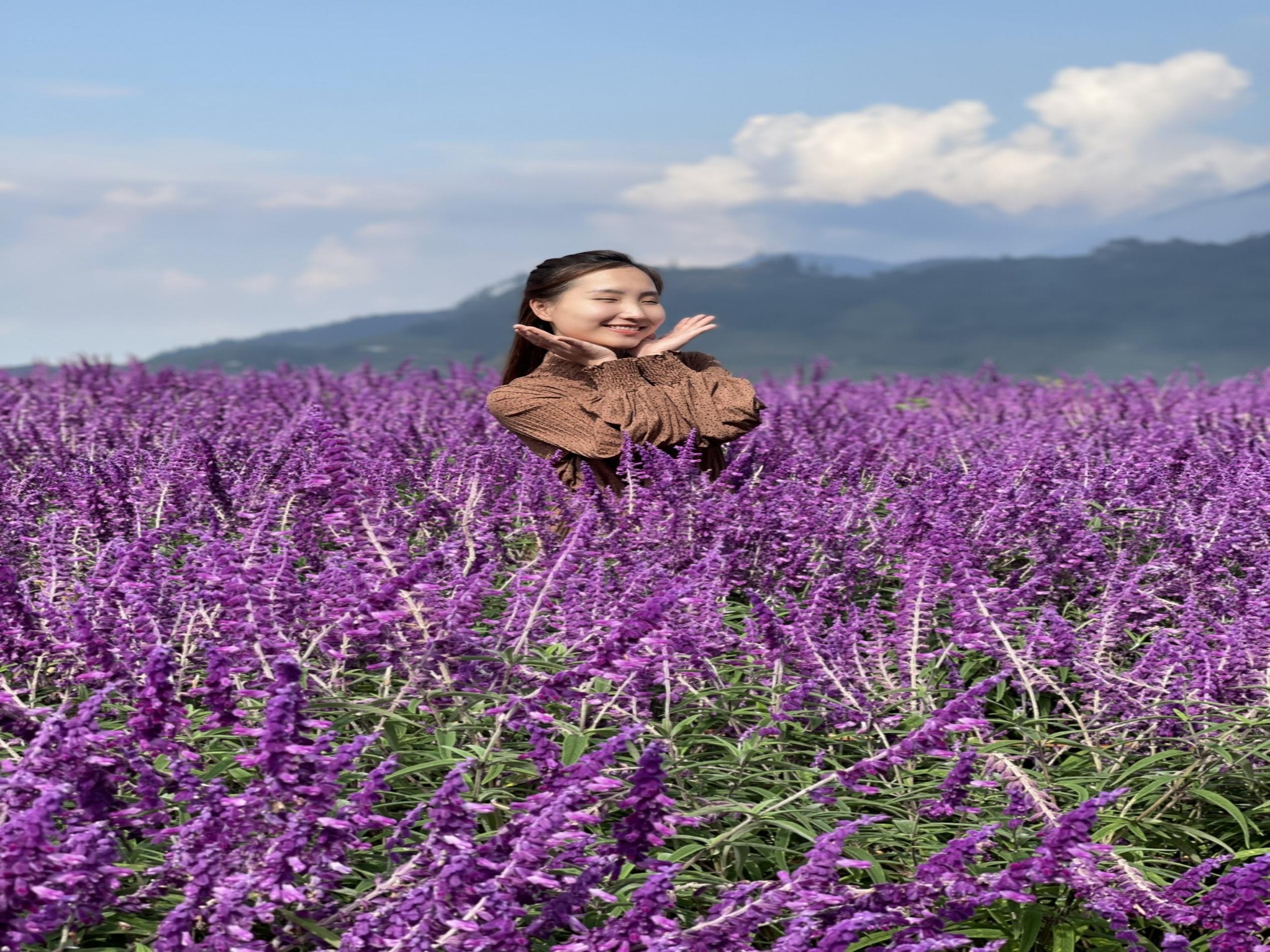 Mùa thu Sa Pa – Mùa của những loài hoa mê đắm lòng người