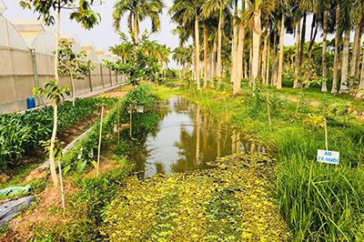 Bao Gia Farm